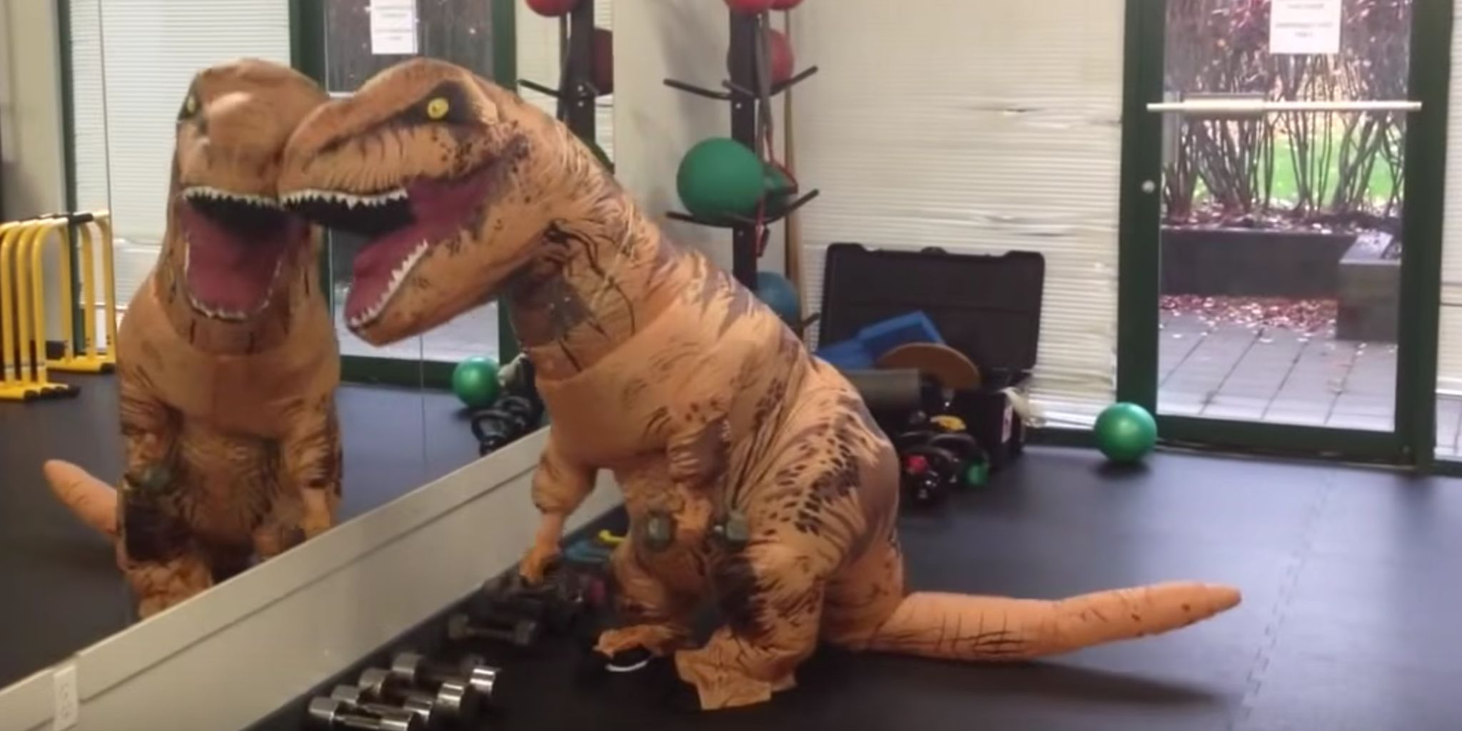 The Funniest T-Rex Videos That'll Crack You Up